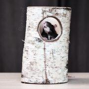szczur-ham-stake-tunel-brzozowy-xxl-3